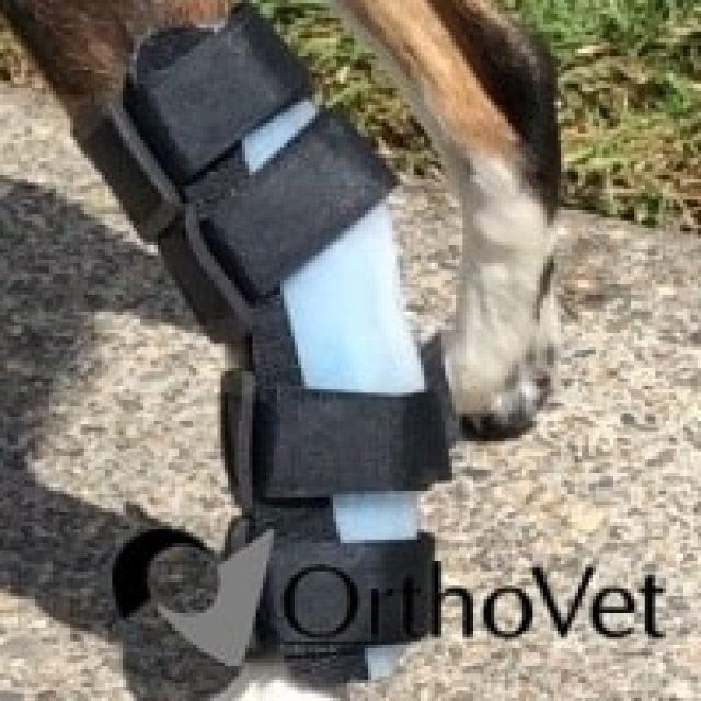 Ortho Vet Splints