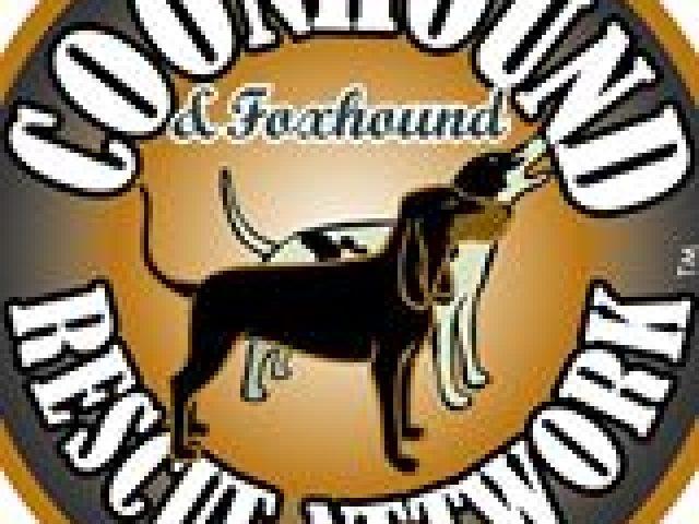 Coonhound Rescue Network