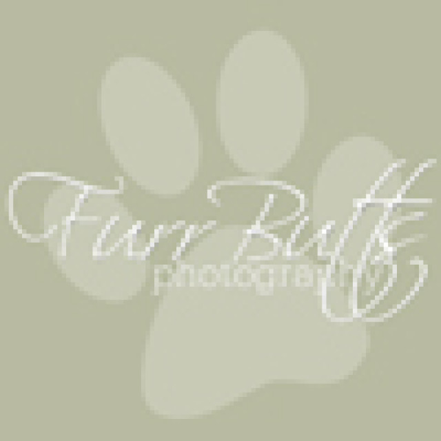 FurrButts Photography