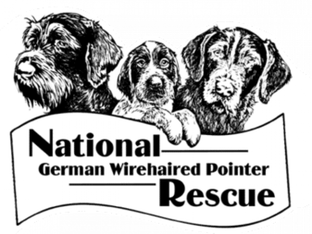 National German Wirehaired Pointer Rescue, Inc.