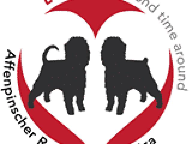Affenpinscher Rescue of America