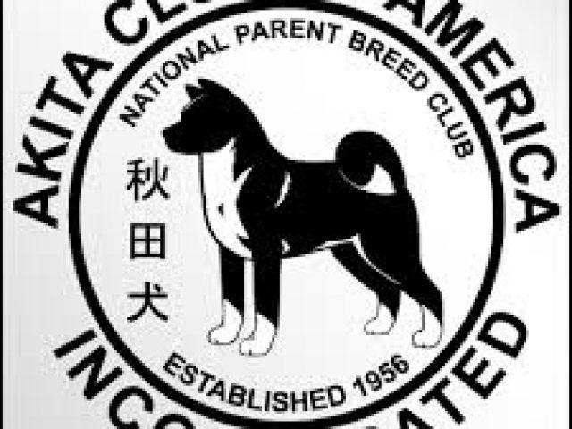 The Akita Club of America Rescue
