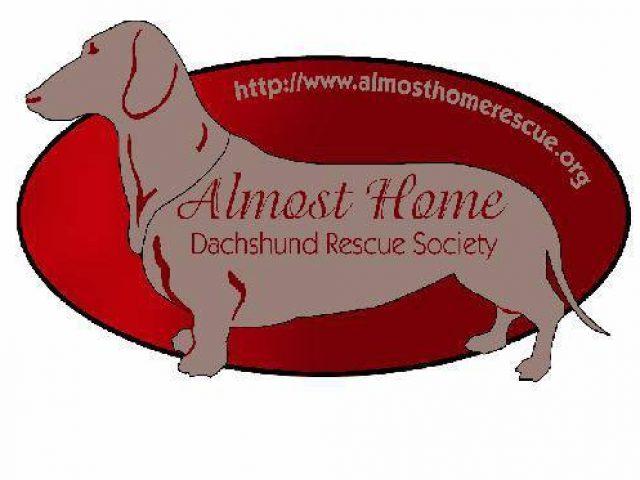 Almost Home Dachshund Rescue Society