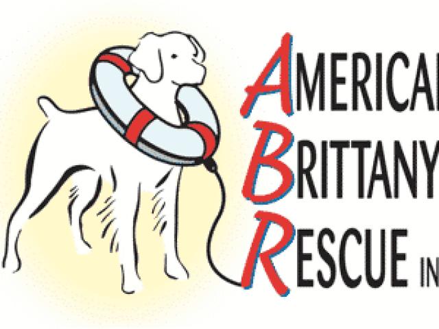 American Brittany Rescue