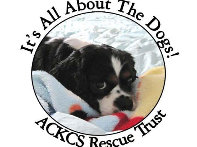 American Cavalier King Charles Spaniel Rescue Trust, Inc.