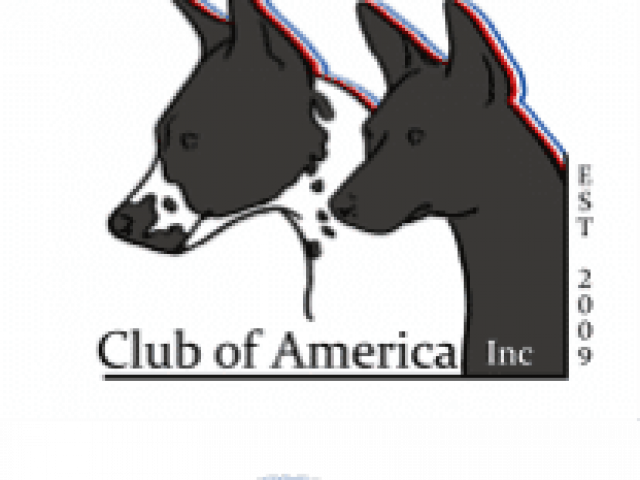 American Hairless Terrier Club of America, Inc. – Rescue