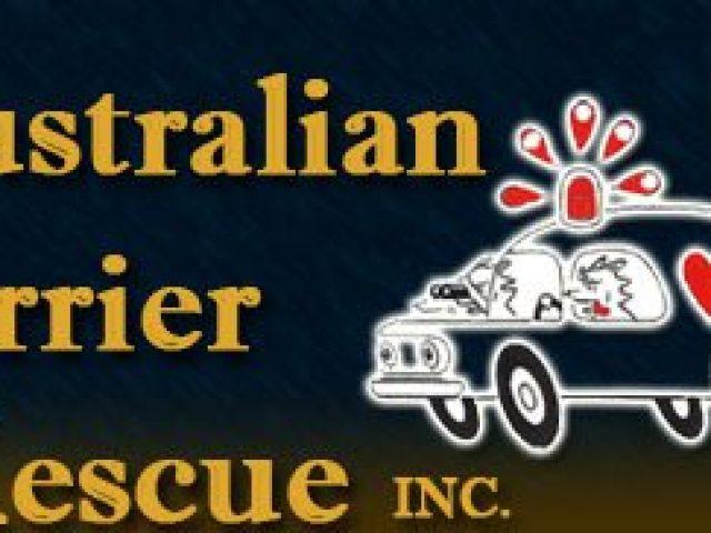 Australian Terrier Rescue, Inc.