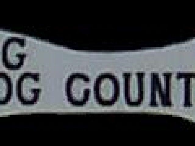 B & G Dog Country