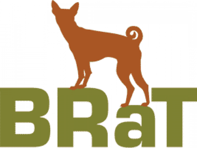 Basenji Rescue and Transport