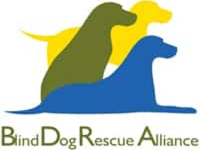 Blind Dog Rescue Alliance