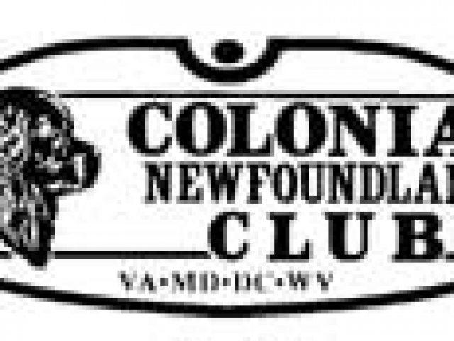 Colonial Newfoundland Club and Rescue