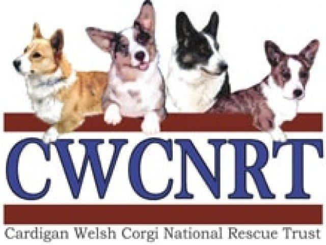 Cardigan Welsh Corgi National Rescue Trust