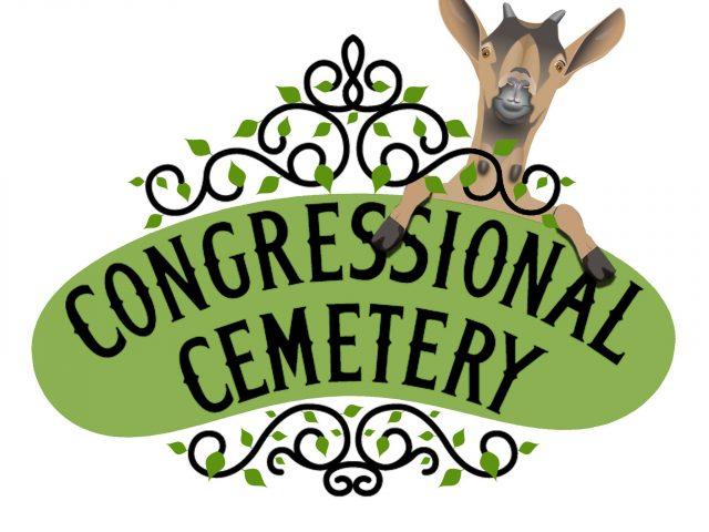 Historic Congressional Cemetery Dog Prk