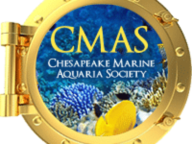 Chesapeake Marine Aquaria Society