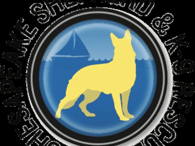 Chesapeake Shepherd & K-9 Rescue, Inc.