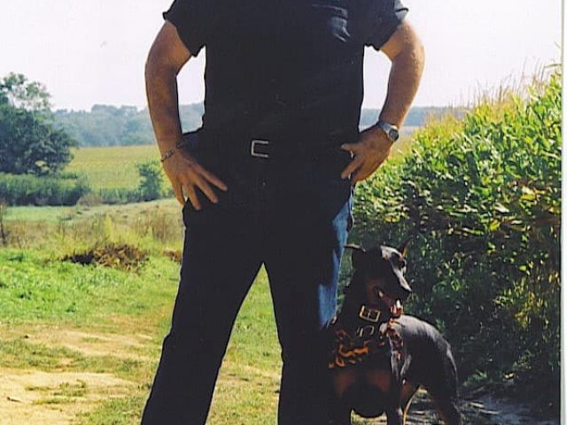 Companions Dog Training, LLC