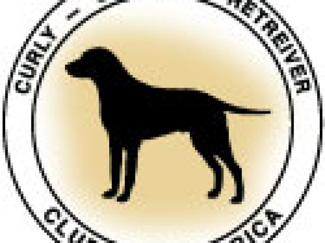 Curly-Coated Retriever Club of America Rescue and Referral