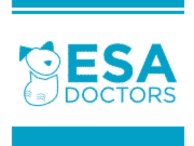 Emotional Support Animal Doctors