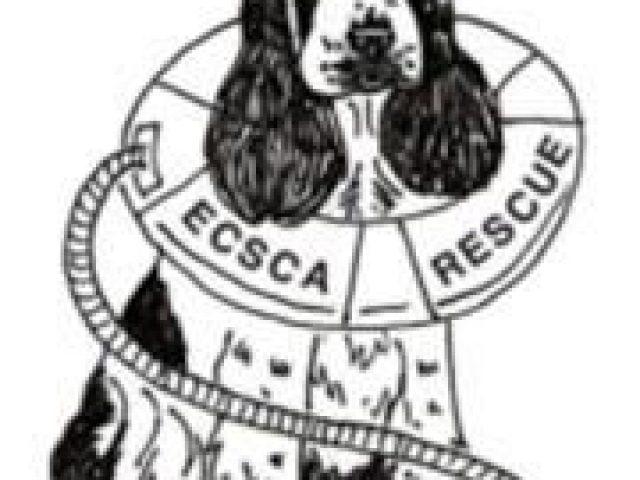 English Cocker Spaniel Club of America Rescue