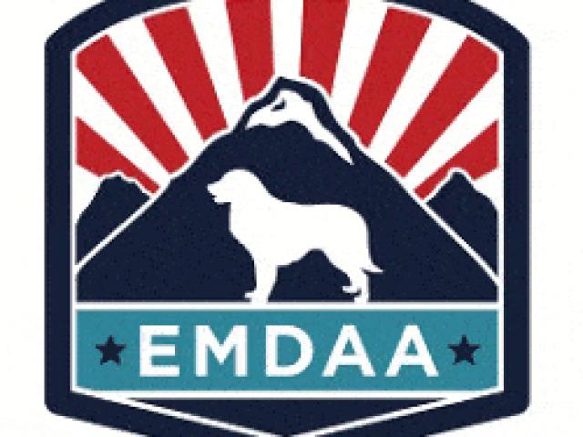 Estrela Mountain Dog Association of America Rescue