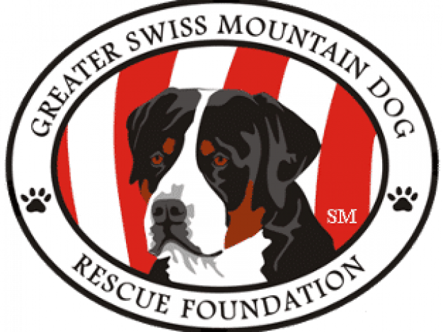 Greater Swiss Mountain Dog Rescue Foundation