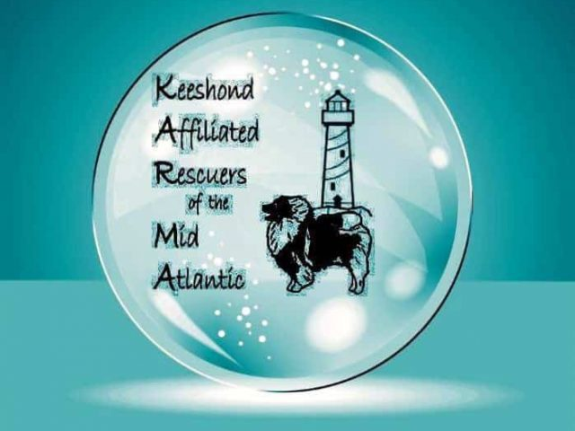 Keeshond Affiliated Rescuers of the Mid Atlantic