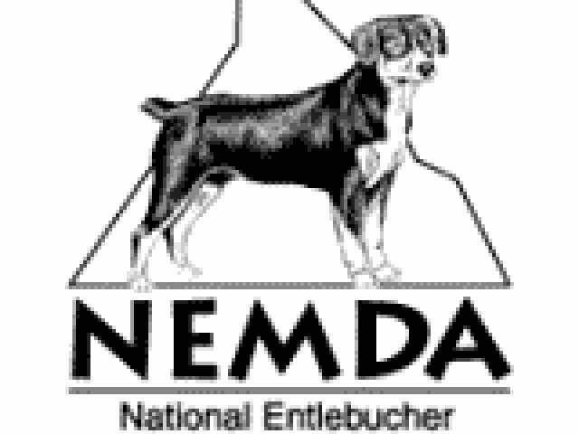 National Entlebucher Mountain Dog Association Rehome & Rescue