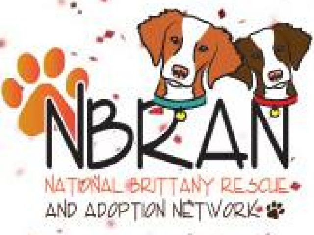 National Brittany Rescue and Adoption Network