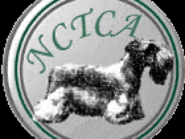 National Cesky Terrier Club of America Rescue