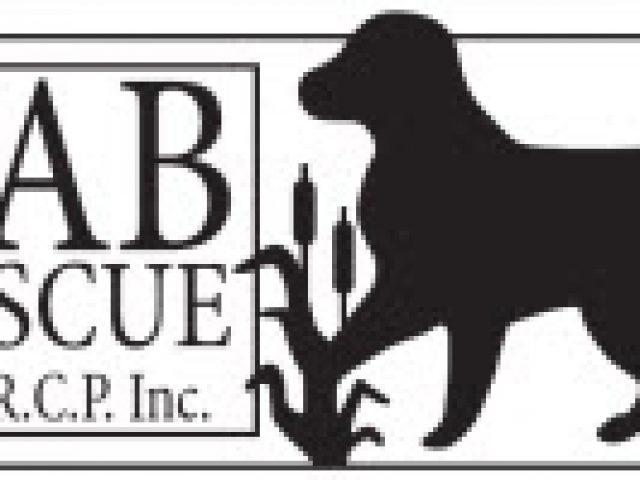 Lab Rescue of L.R.C.P. Inc.