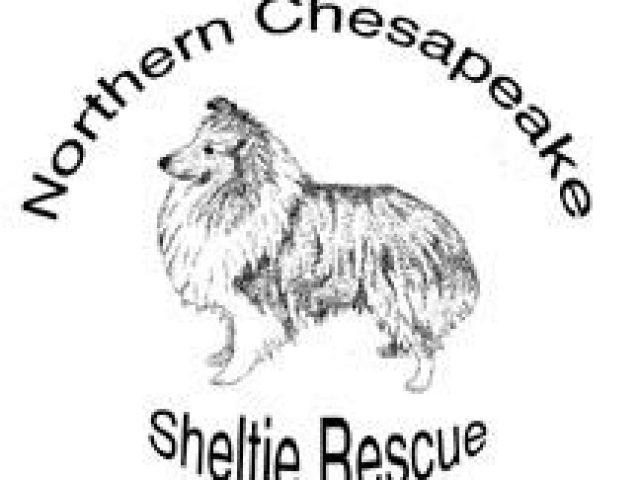 Northern Chesapeake Sheltie Rescue, Inc.