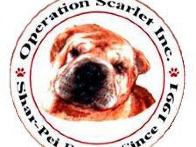 Operation Scarlet, Inc.