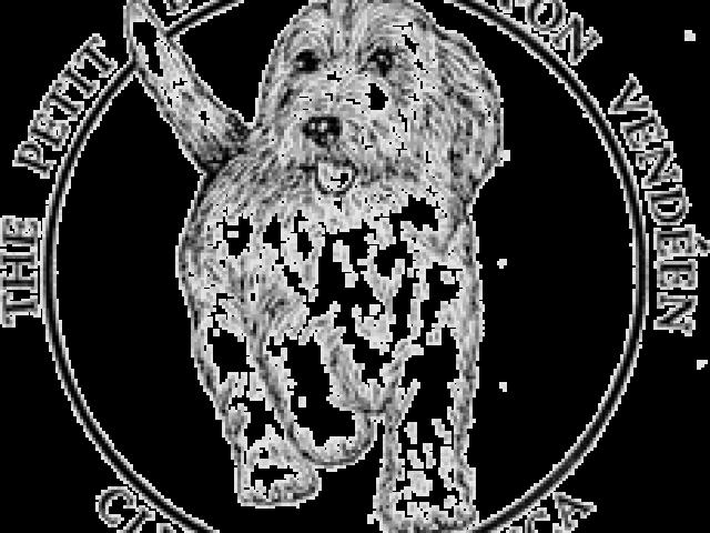Petit Basset Griffon Vendéen Club of America Rescue