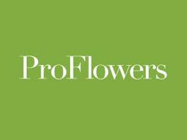 Pro Flowers – Help Keep Dogs and Cats Safe From These 199 Poisonous Plants