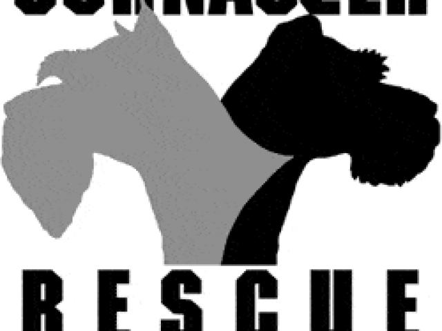 Schnauzer Rescue of the Mid-Atlantic