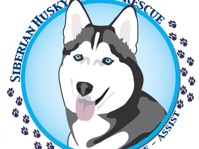 Siberian Husky Assist Rescue