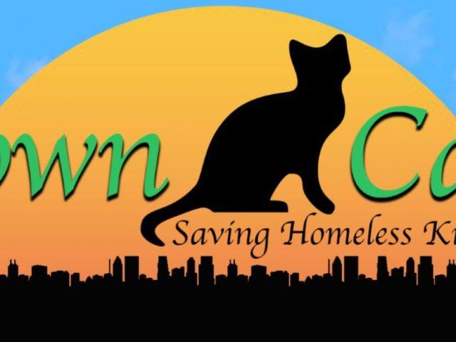 Town Cats of Ocean City