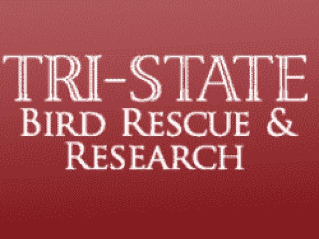 Tri-State Bird Rescue and Research