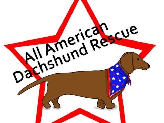 All American Dachshund Rescue: Mid East Region