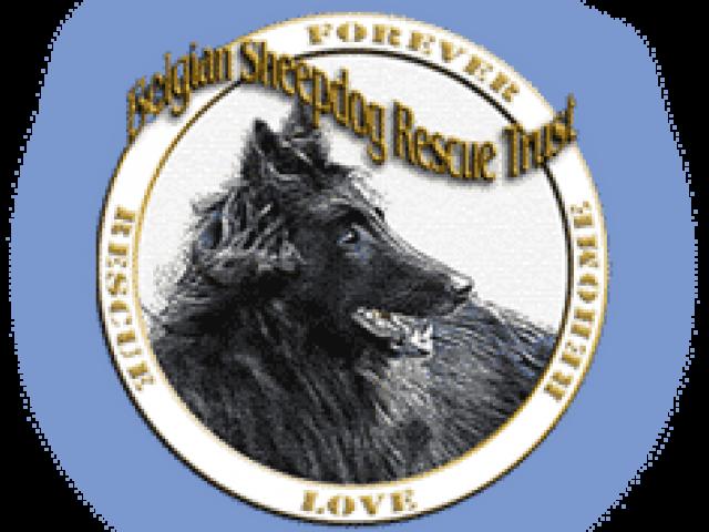 Belgian Sheepdog Rescue Trust