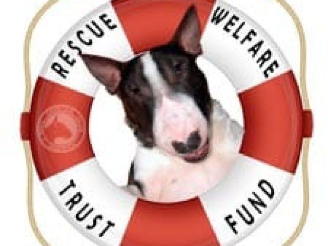 Rescue Welfare Trust Fund of the Bull Terrier Club of America