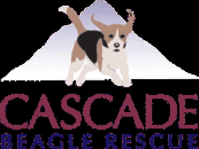 Cascade Beagle Rescue