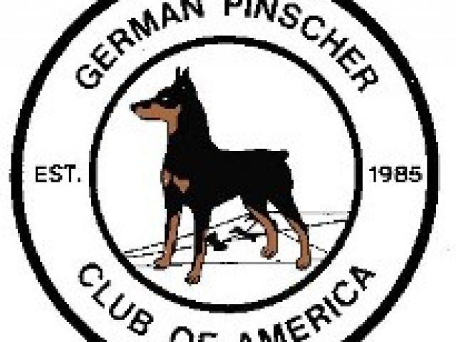 German Pinscher Club of America Rescue