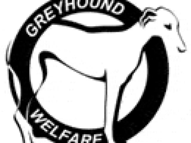 Greyhound Welfare