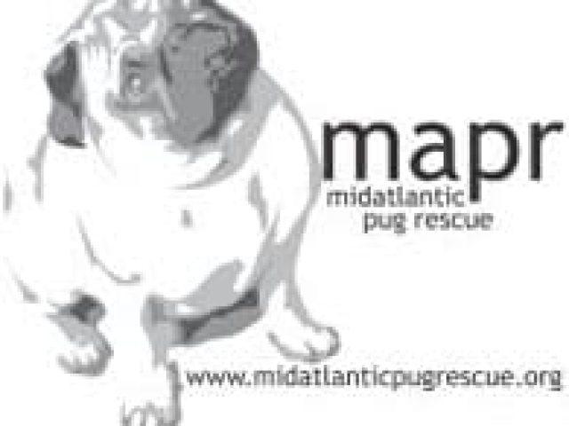 Mid-Atlantic Pug Rescue