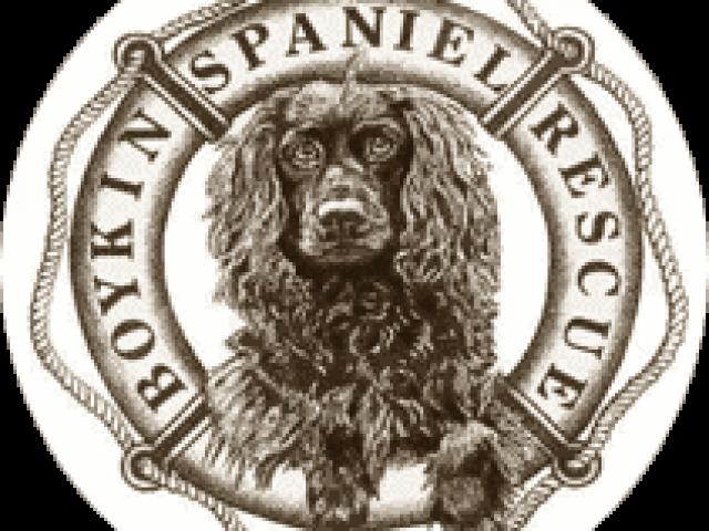 Boykin Spaniel Rescue, Inc