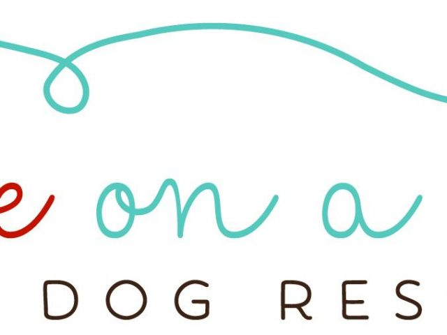 Love on a Leash Dog Rescue