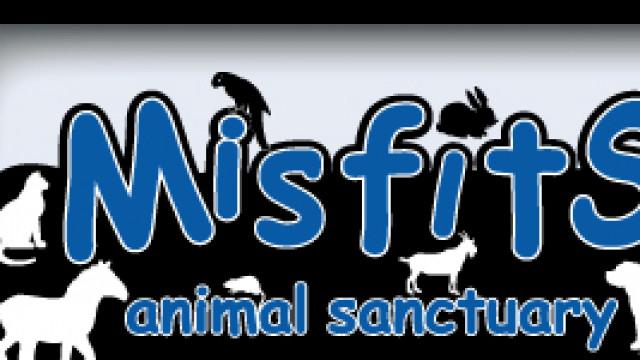 Misfits Animal Sanctuary