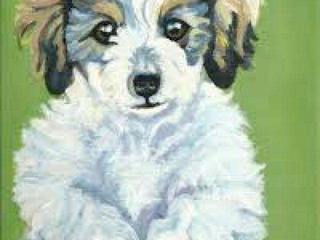 Paint My Pet Portraits