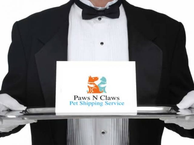 Paws N Claws Pet Transport
